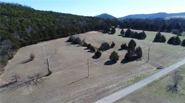 Lot 32 Bella Vista Drive, Berryville, AR 72616 (MLS #483755) :: Five Doors Network Northwest Arkansas