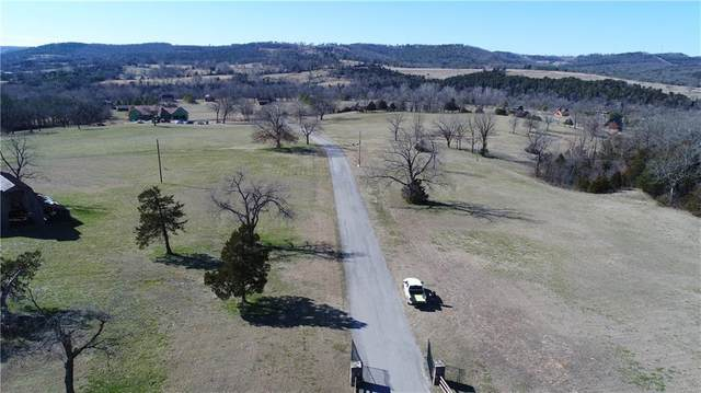 Lot 12 Terra Vista Drive, Berryville, AR 72616 (MLS #491625) :: McNaughton Real Estate
