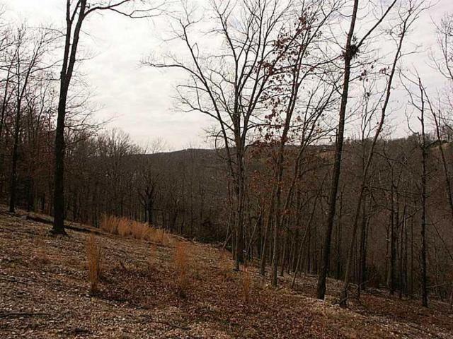 Eureka Springs, AR 72631 :: McNaughton Real Estate
