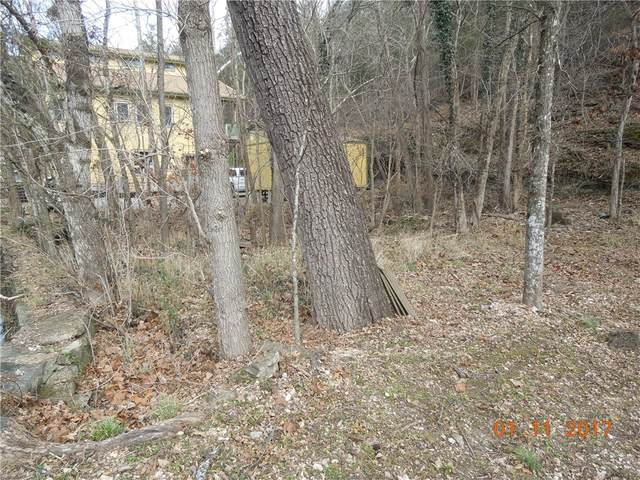 N Main Street, Eureka Springs, AR 72632 (MLS #1035638) :: Annette Gore Team | RE/MAX Real Estate Results