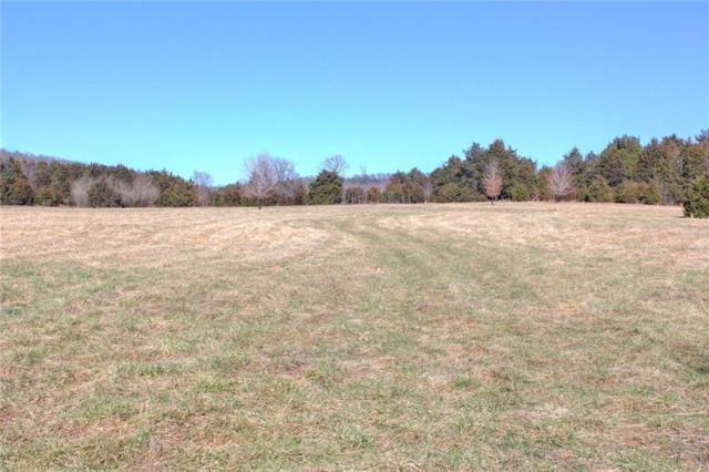 Paul Pray Tract 4, Fayetteville, AR 72735 (MLS #1038103) :: McNaughton Real Estate