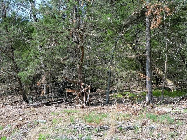92 Sailboat Drive, Holiday Island, AR 72631 (MLS #1042365) :: NWA House Hunters | RE/MAX Real Estate Results