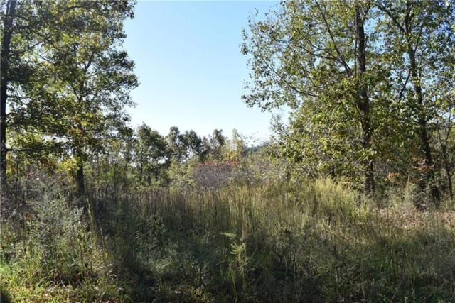 51.96AC Cyclone  Rd, Pineville, MO 64856 (MLS #1062469) :: McNaughton Real Estate