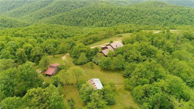 HC 30 Box 55 B Fallingwater Road, Pelsor, AR 72856 (MLS #1073097) :: McNaughton Real Estate