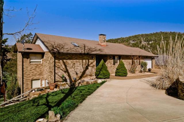 51 Lakeside  Dr, Holiday Island, AR 72631 (MLS #1073308) :: McNaughton Real Estate