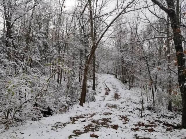 5731 Estate View Road, Fayetteville, AR 72703 (MLS #1116100) :: Five Doors Network Northwest Arkansas