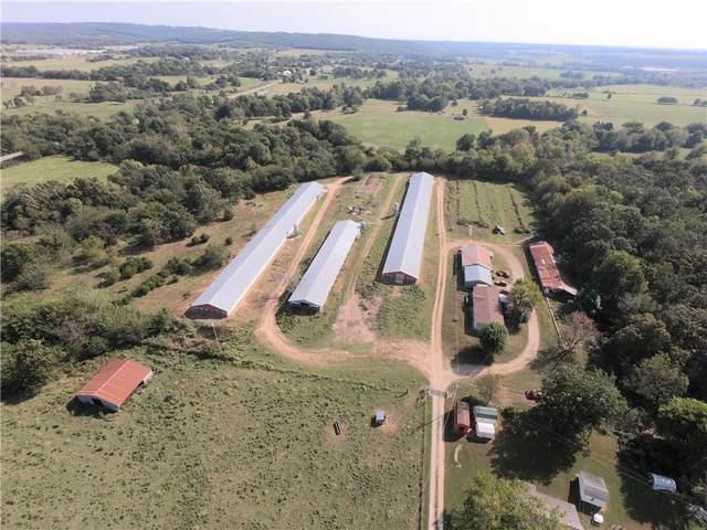 10778 Elms  Rd, Summers, AR 72769 (MLS #1126598) :: McNaughton Real Estate