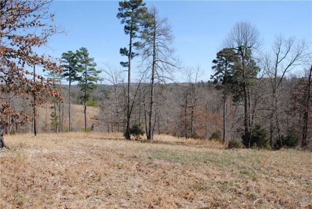 20 Acres Lemons Ridge, Rogers, AR 72756 (MLS #1041817) :: McNaughton Real Estate