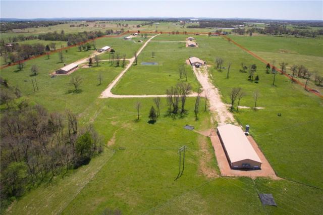 470299 E E 0650  Rd, Westville, OK 74965 (MLS #1075598) :: McNaughton Real Estate