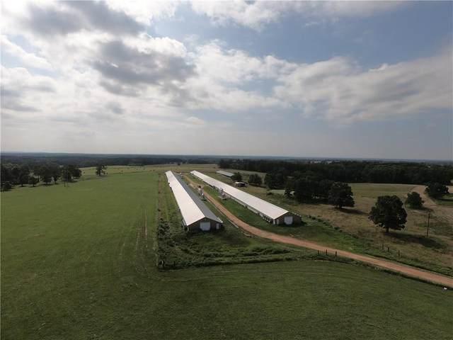 13254 N Gaiche  Rd, Gentry, AR 72734 (MLS #1119473) :: Five Doors Network Northwest Arkansas