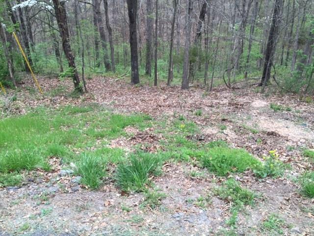 Lot 9 Forfar Drive, Bella Vista, AR 72715 (MLS #1015459) :: McNaughton Real Estate