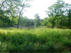 10 White River  Ln, Holiday Island, AR 72631 (MLS #1029317) :: McNaughton Real Estate