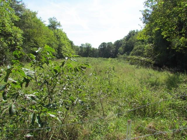 Hammon, Elkins, AR 72727 (MLS #1056153) :: McNaughton Real Estate
