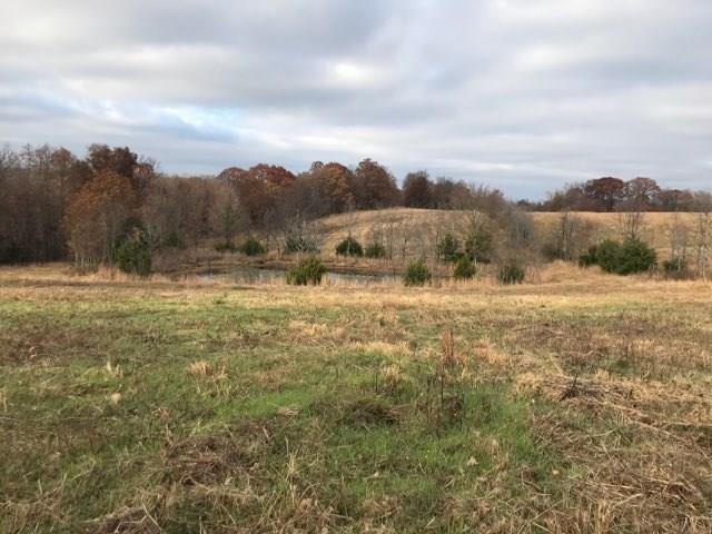 Shackelford Rd, Elkins, AR 72727 (MLS #1065221) :: McNaughton Real Estate