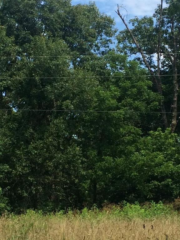 Rocky Ridge  Tr, Little Flock, AR 72756 (MLS #1079264) :: McNaughton Real Estate