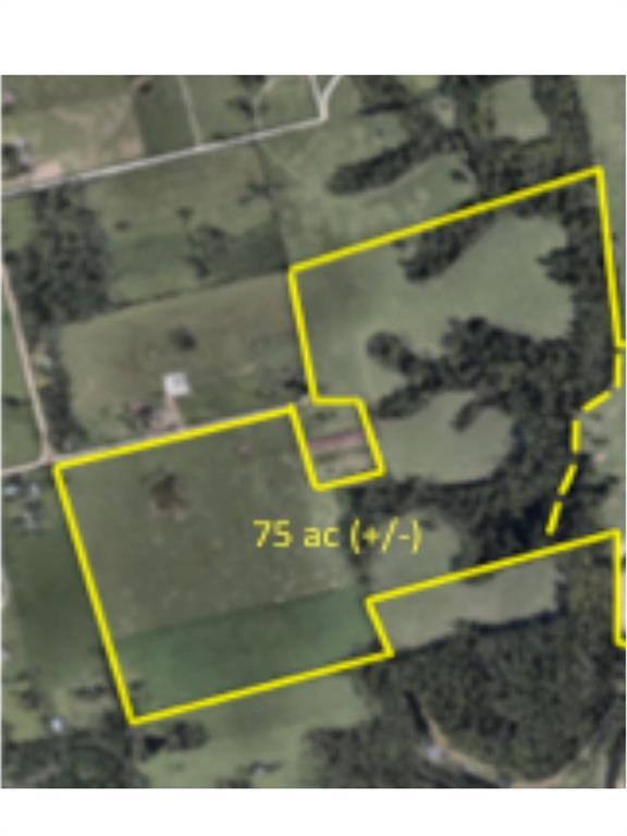75 Acres Farrar  Ln, Cave Springs, AR 72718 (MLS #1083831) :: McNaughton Real Estate