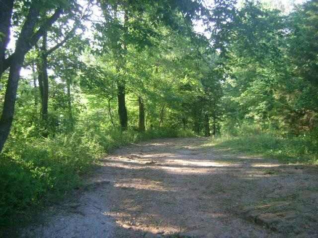 17033 Highway 170, West Fork, AR 72774 (MLS #1085877) :: McNaughton Real Estate
