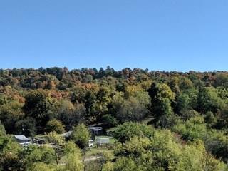 15713 Greasy Valley  Rd, Prairie Grove, AR 72753 (MLS #1104217) :: McNaughton Real Estate
