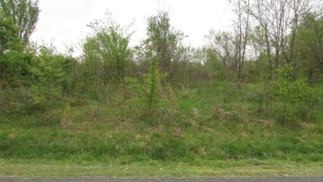 Hebrides Dr, Bella Vista, AR 72715 (MLS #1111437) :: McNaughton Real Estate