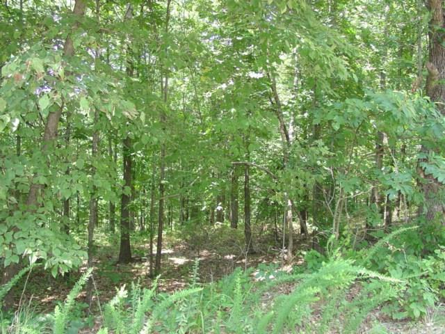 Ilford Ln, Bella Vista, AR 72715 (MLS #1111749) :: HergGroup Arkansas