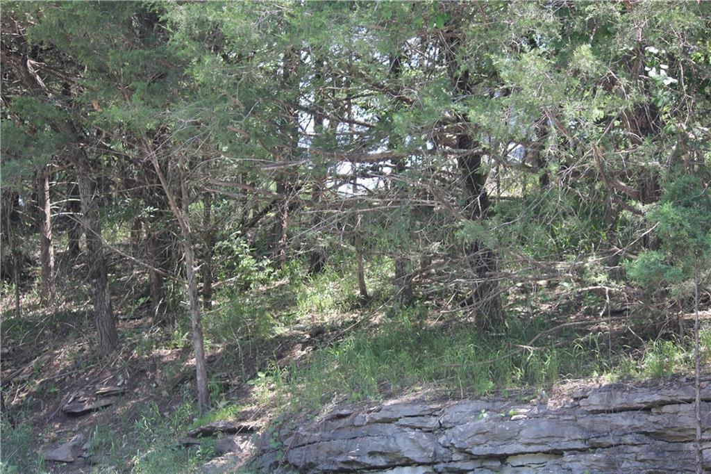 Lot 93 Oak Leaf Circle - Photo 1