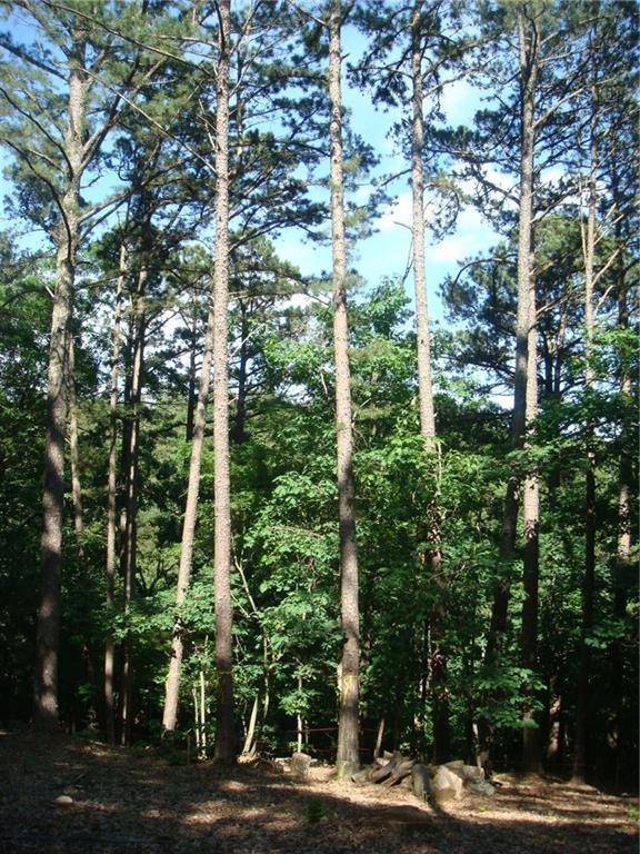 982 Pine Tree  Rd, Kansas, OK 74347 (MLS #1115409) :: Five Doors Network Northwest Arkansas