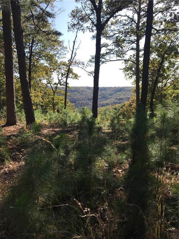 Moon's View Drive, Eureka Springs, AR 72632 (MLS #1131660) :: McNaughton Real Estate