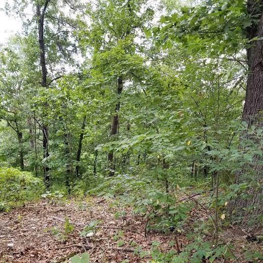 Winsford Cir, Bella Vista, AR 72715 (MLS #1132906) :: Five Doors Network Northwest Arkansas