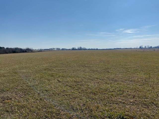 19.62AC Hickman  Dr, Pea Ridge, AR 72751 (MLS #1134179) :: McNaughton Real Estate