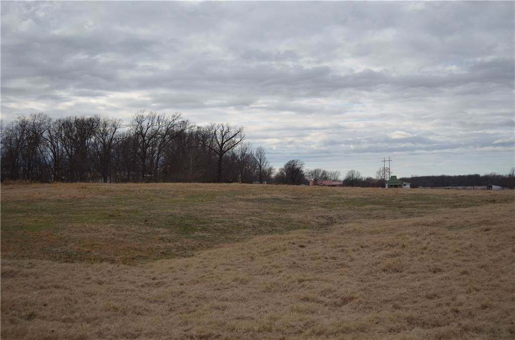 Lot 16     000 Beaty Road - Photo 1