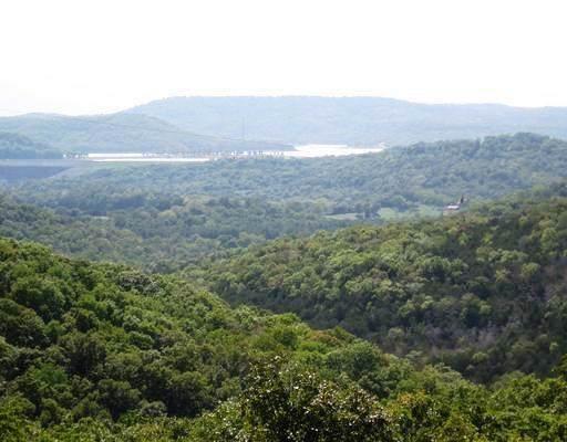 Jim Moon  Rd, Eureka Springs, AR 72631 (MLS #1137630) :: McNaughton Real Estate