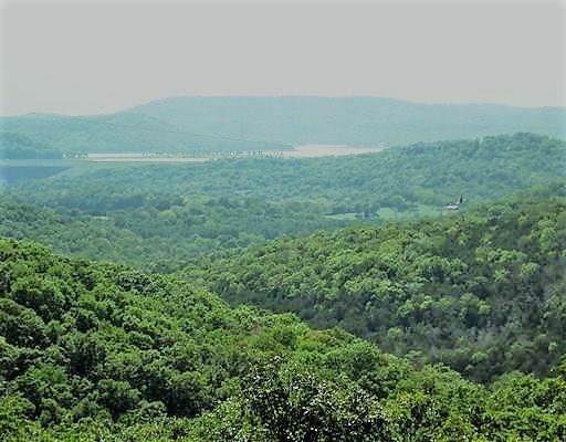 Jim Moon Road, Eureka Springs, AR 72631 (MLS #1137961) :: Jessica Yankey   RE/MAX Real Estate Results