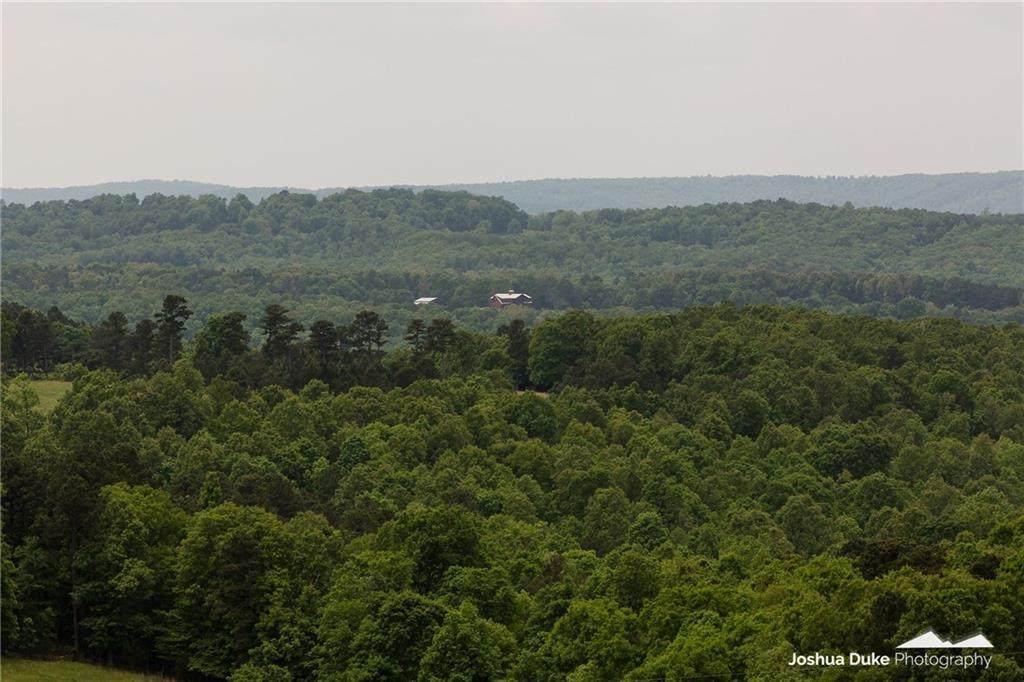 600 Acres County Road 524 - Photo 1