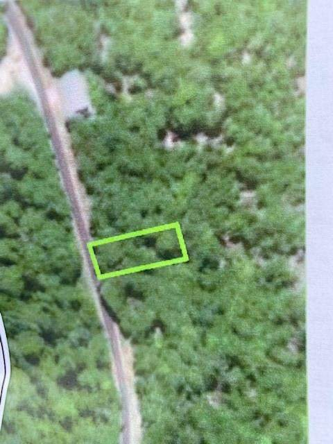 TBD Cypress Point, Holiday Island, AR 72631 (MLS #1139677) :: McNaughton Real Estate