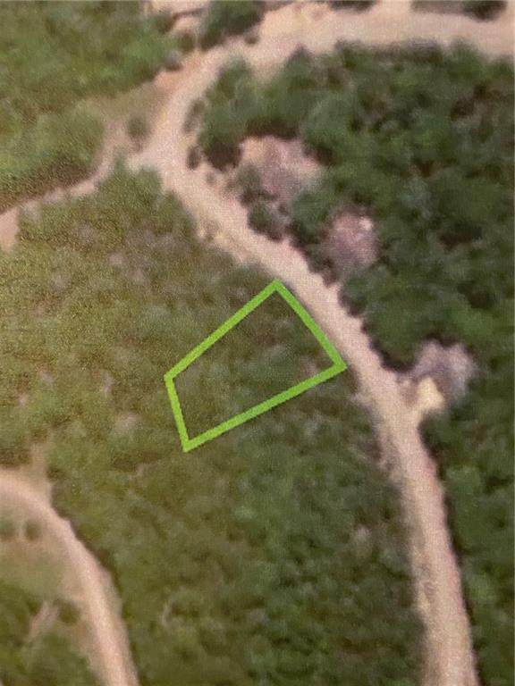 TBD Deer Run Drive, Holiday Island, AR 72631 (MLS #1139756) :: Five Doors Network Northwest Arkansas