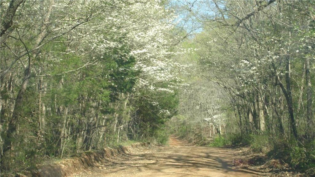 0 4630 Road - Photo 1