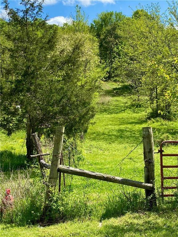 Greasy Valley Road, Prairie Grove, AR 72753 (MLS #1145459) :: Five Doors Network Northwest Arkansas