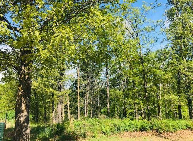 3421 Post Oak Court, Centerton, AR 72719 (MLS #1145679) :: McNaughton Real Estate