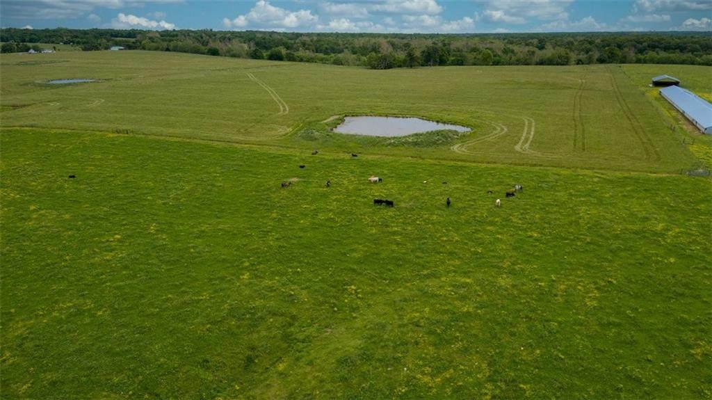 21.64 acres Stage Coach Road - Photo 1