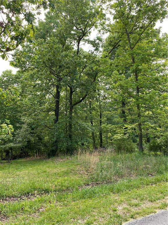 Lot 18 Ozark Ridge Drive - Photo 1