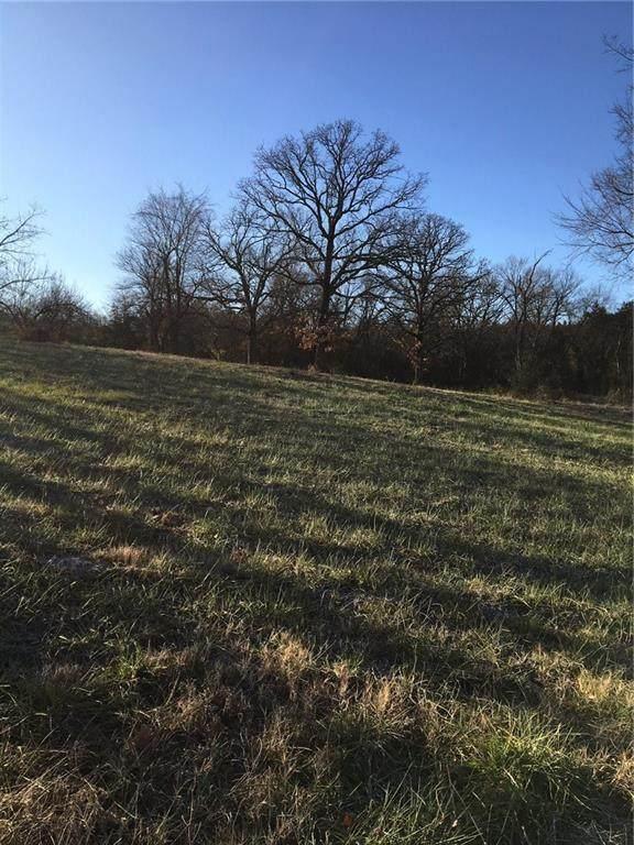 200 Trinnen Lane, Berryville, AR 72616 (MLS #1150227) :: Jessica Yankey | RE/MAX Real Estate Results