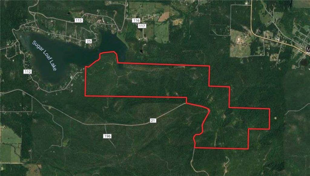 Tbd 675 Acres Sugarloaf Mountain Road - Photo 1
