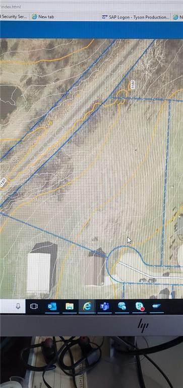 448 Wilson Drive, Gentry, AR 72734 (MLS #1153485) :: McNaughton Real Estate