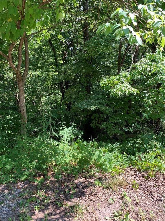 Ryde Lane, Bella Vista, AR 72715 (MLS #1153678) :: McNaughton Real Estate