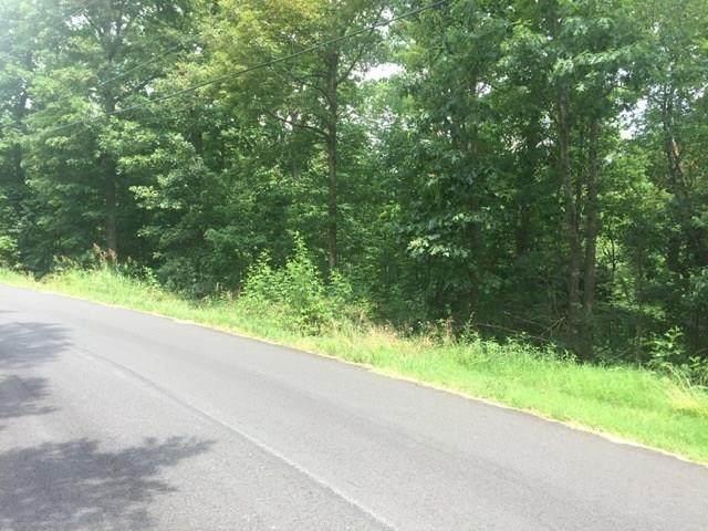 Llanon Drive, Bella Vista, AR 72714 (MLS #1154232) :: Annette Gore Team | RE/MAX Real Estate Results