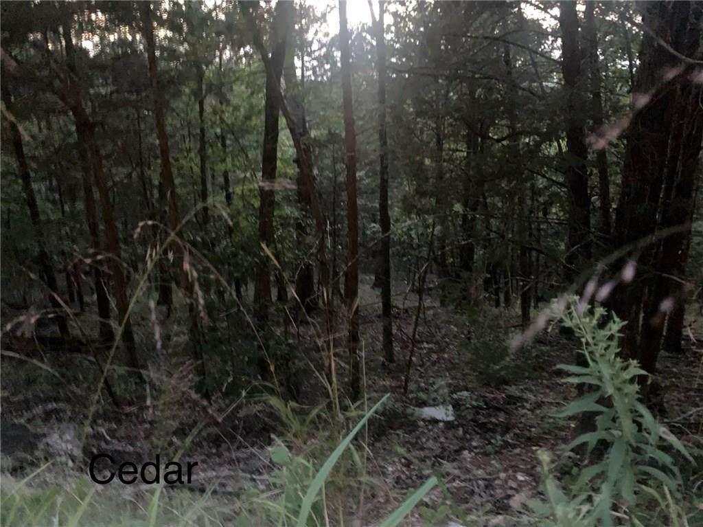 Cedar Lane - Photo 1
