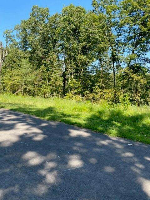 Lot 9 Logan Lane, Bella Vista, AR 72715 (MLS #1158235) :: McNaughton Real Estate