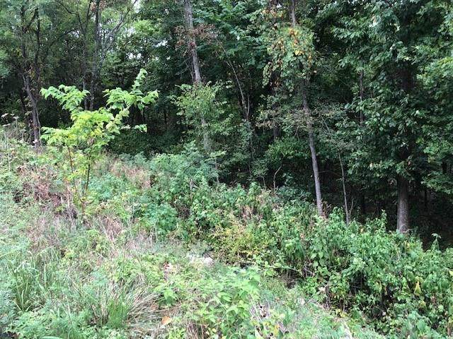 TBD Stateline Drive, Holiday Island, AR 72631 (MLS #1158250) :: McNaughton Real Estate