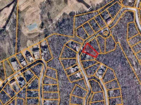 Scalloway Drive, Bella Vista, AR 72715 (MLS #1161095) :: McNaughton Real Estate