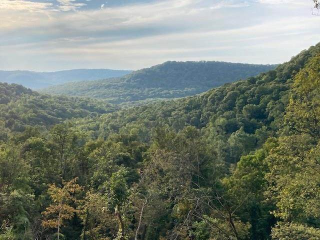 Winfrey Valley, Winslow, AR 72959 (MLS #1161184) :: McNaughton Real Estate